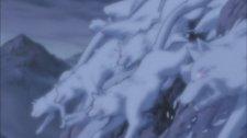 Снежные волки