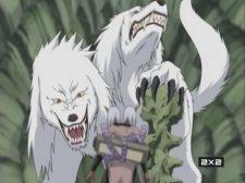 Превращение в двуглавого волка