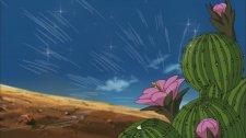 Иллюзия кактуса