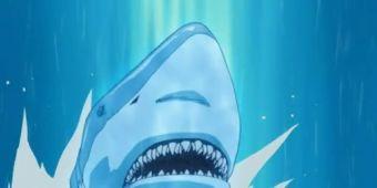 Акула-ракета