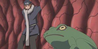 Превращение в жабу