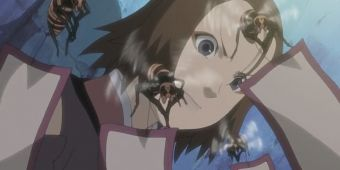 Пчелиные бомбы